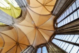 Domkerk, Utrecht, 2011