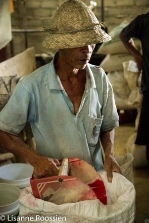rijstfabriekje-1